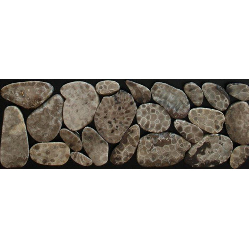 Petoskey Stone Mosaic Tile